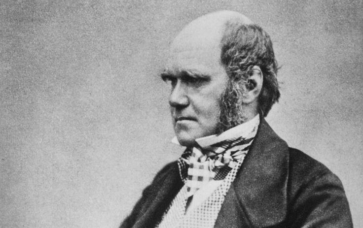 """#laicità #darwin #DarwinDay  Il Darwin Day comincia a Venezia, con un dibattito sul libro """"Charles Darwin – Lettere sulla religione"""" di Telmo Pievani, il fitto calendario"""
