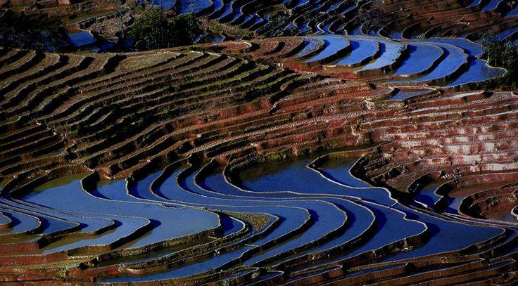 Çin'in hemen her yerinde bulunan teras tarlaları ülkenin hem üretim…