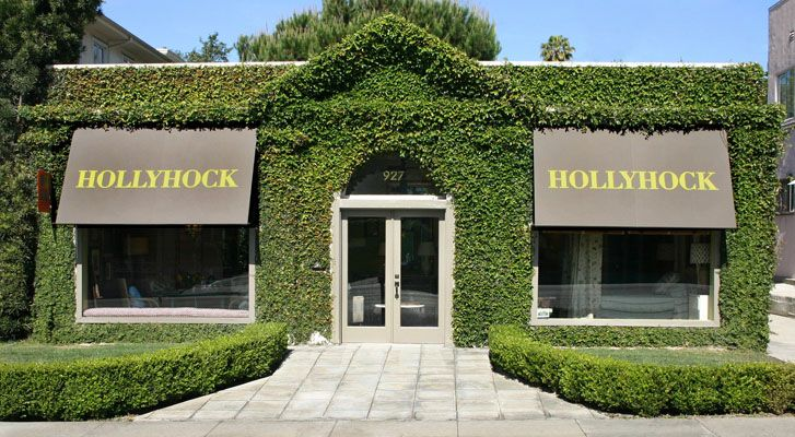 Ivy/boxwood covered building inspiration - Hollyhock Shop