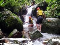 Exploring the Rainforest  -  North Johnstone River Queensland www.raft.com.au