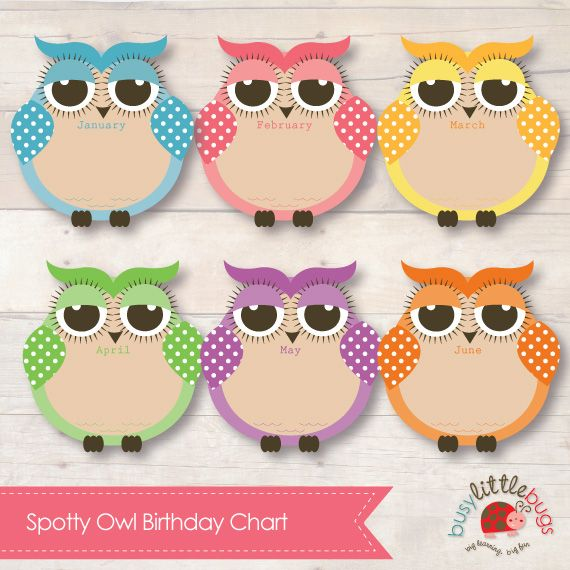 Busy Little Bugs - Spotty Owl Birthday Chart for Child Educators 12 months