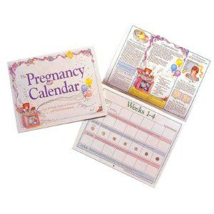 Pregnancy Calendar - Your Pregnancy Day by Day
