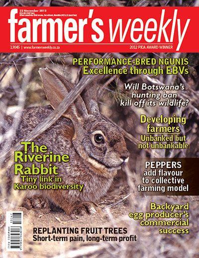 22 November 2013 - 'The riverine rabbit - tiny link in Karoo biodiversity'
