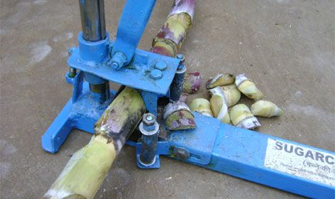 The machine is for removing buds from the sugarcane sticks. These buds are used…  For more information visit our website: www.nif.org.in