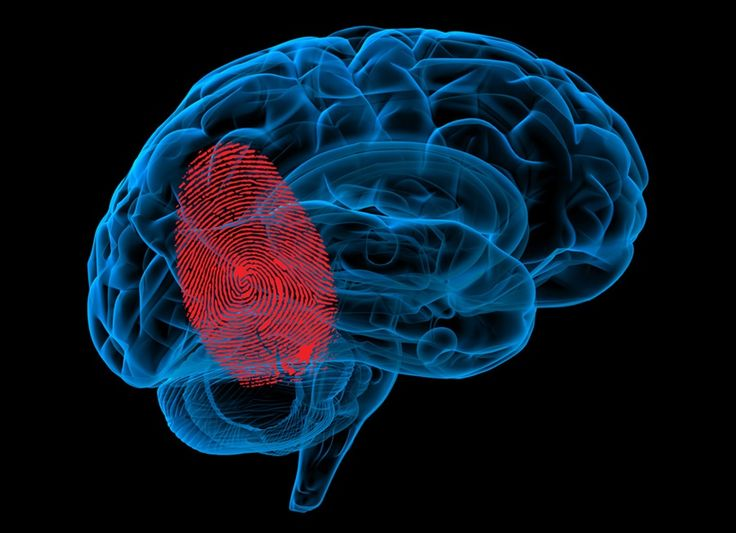 Mapping Chronic Pain in the Brain