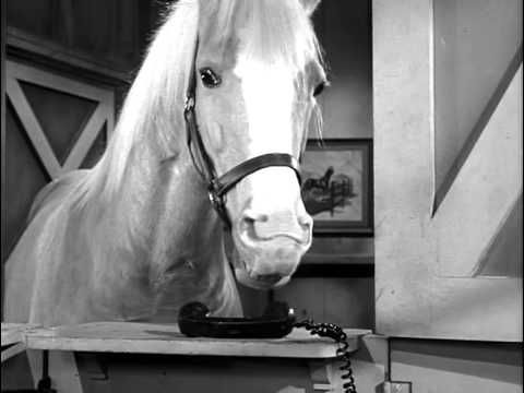 MAE WEST guest starred on this episode of Mister Ed