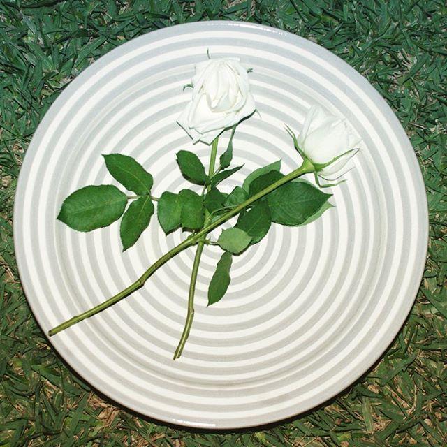 Ännu lite nytt inför i vår! Grå/vit randig keramik. Vi syns på Formex! Monter A 18:02. Välkomna! @atlashome #atlashome #gray #marockanskkeramik #marrakech #amazing #keramik #grå #grått #stockholm #formex #formex2016 #stockholmsmässan #rose #roses #flowers #flower