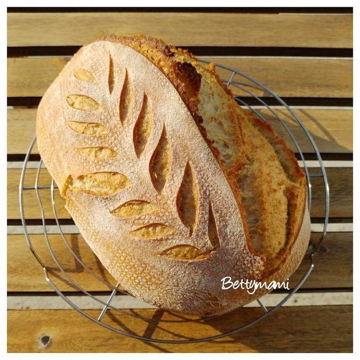 Kovászos kenyér éjjeli hűtős kelesztéssel   Betty hobbi konyhája