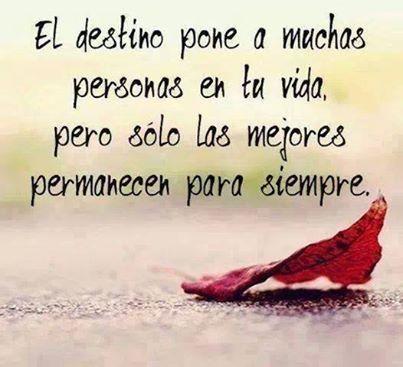 El destino pone a muchas personas en tu vida...