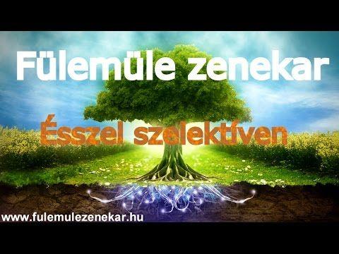 Szelektív dal ÉSSZEL SZELEKTÍVEN Fülemüle zenekar 2016 szelektív hulladé...
