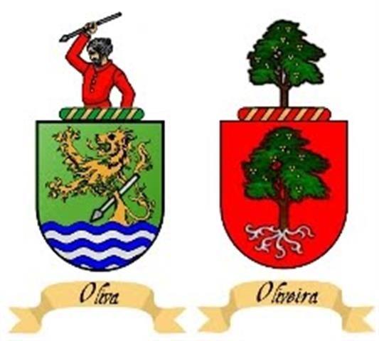 No Brasil existem variados sobrenomes. A família Oliveira é bastante conhecida entre brasileiros, mas muitos não sabem muito sobre. Veja abaixo informações e curiosidades sobre a origem desse sobre…