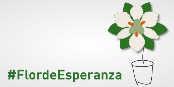 Esta es nuestra flor, el Iris Blanco, #FlordeEsperanza Es nuestro nuevo símbolo para todas aquellas personas que buscan esperanza y que gracias a la investigación en cáncer la tienen. Porque cada proyecto de investigación es un paso más a la vida, es un paso más a la esperanza de vencer al cáncer. Investigar es vida, Investigar es esperanza. 6 de mayo #cuestaciónaecc