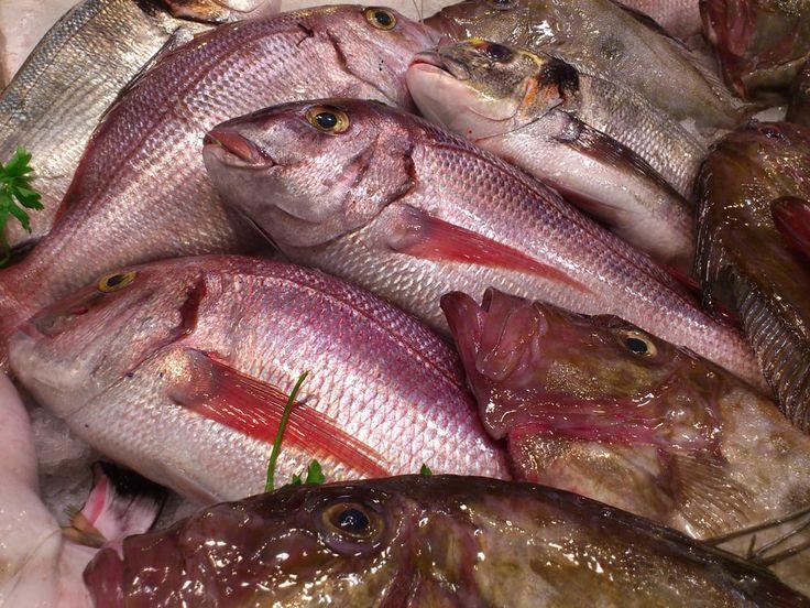 """cool Restaurante """"El Pastor"""" im Fischerhafen von Conil"""
