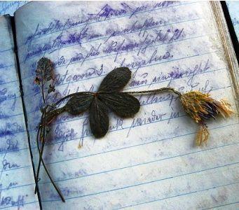 """""""Il mio #libro è #poesia; e se non è, lo diverrà"""" #Ibsen #NatiOggi #Felice #Primavera, e #Buonanotte, a Tutti!!  (via twitter @imieilibri_it - https://twitter.com/imieilibri_it)"""