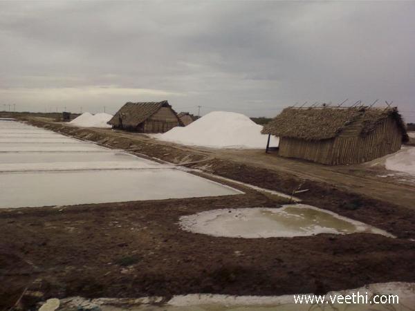 Salt bed at Tuticorin
