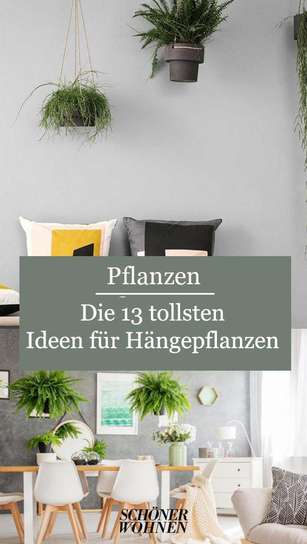 Hangepflanzen Furs Zimmer Schwebende Garten In 2020 Hangepflanzen Pflanzen Und Garten
