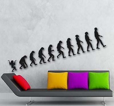 Wall Stickers Vinyl Decal Evolution Darwin Theory Decor Living Room Unique Gift (ig1326)