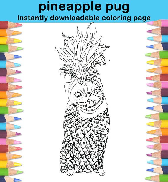 Pineapple Pug Adult Coloring Page - Pug Printable Coloring Page