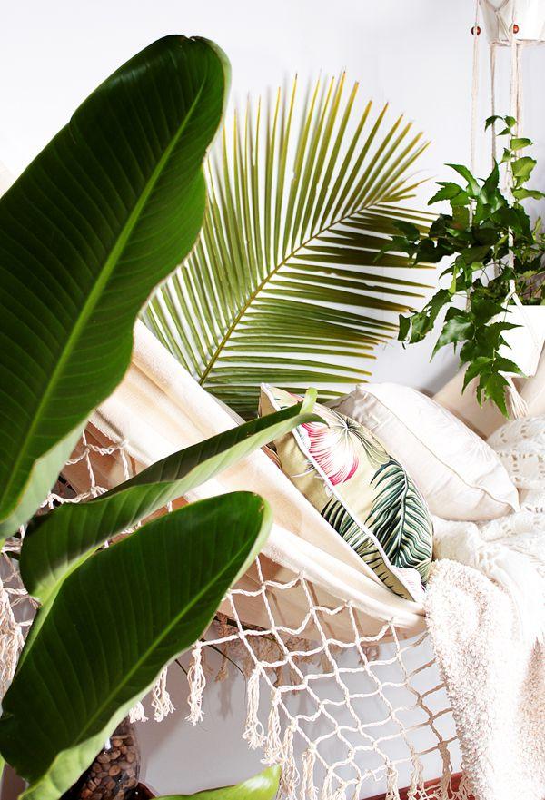 Plantes exotiques dan le salon The design villa via Nat et nature