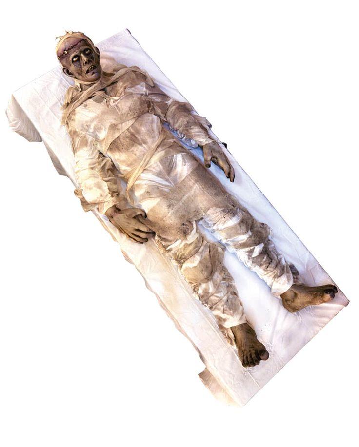 Autopsy Monster Figur Animatronic 190 cm online kaufen ✮ gruselige Halloween Animatronics von Horror-Shop.com ✓ Halloween Kostüme kaufen ✓ Riesenauswahl ✓
