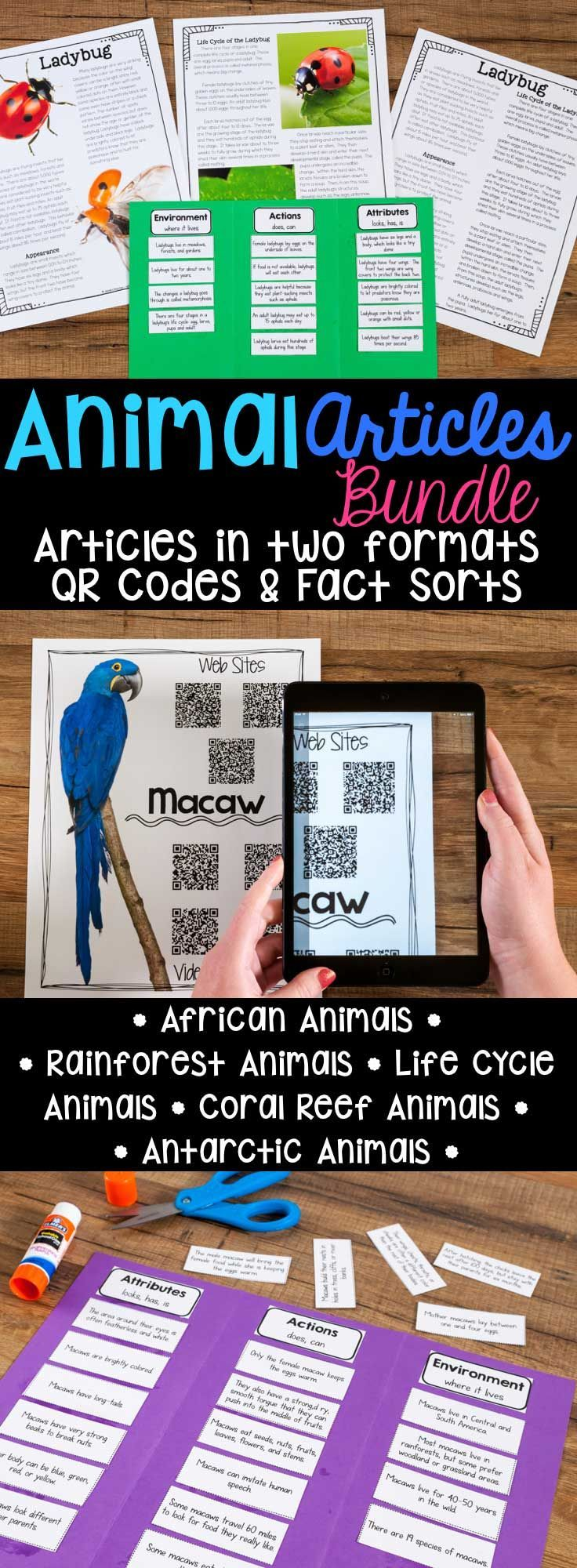 Animal Articles: Informational Article, QR Code Research Page & Fact Sort is a bundle of informational articles all about Animals. These articles are full of interesting facts and details that students can use during reading and writing activities. Includes an article about each animal in two formats (two-page color photos & one-page text), QR Codes for online articles and videos about the animal and a fact sort sheet where students can sort facts about each animal's attributes.