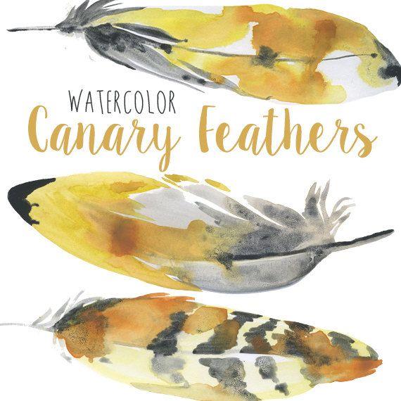 Kanarienvogel Feather ClipArt Clipart von DigitalPressCreation