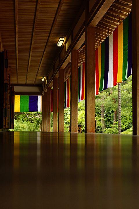 Chishaku-in temple, Kyoto, Japan 智積院  長谷川等伯の作品をゆっくりと。