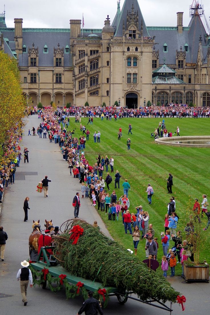 Christmas Tree arrives at the Biltmore House today!