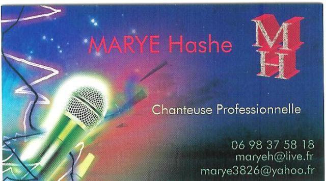 Une chanteuse professionnelle pour animer vos soirées.