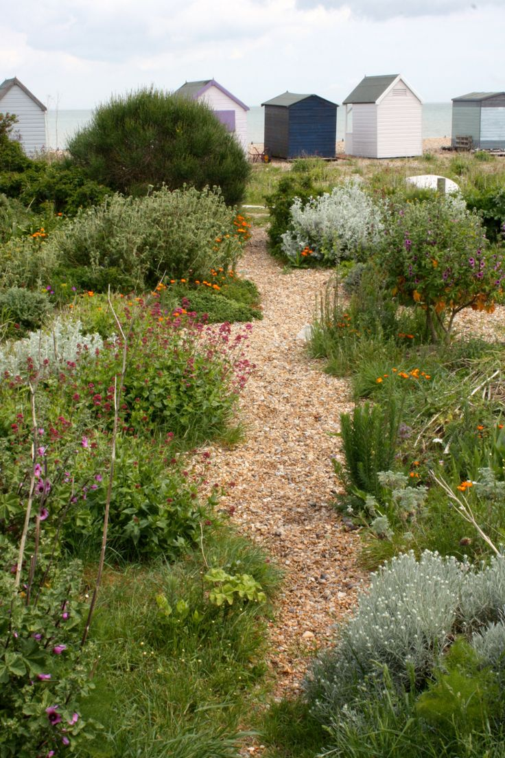 Shoreline garden, Kingsdown, Kent, May 2015