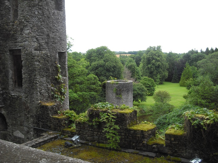 Blarney Castle in County Cork, Ireland. Possibly the most beautiful place I have ever been.