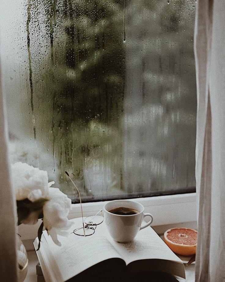 Дождливого утра картинка