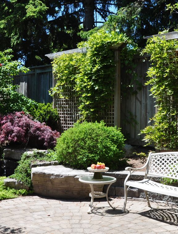 Landscaping Ideas To Hide Ugly Fence : Backyard garden path outdoor ideas vines privacy
