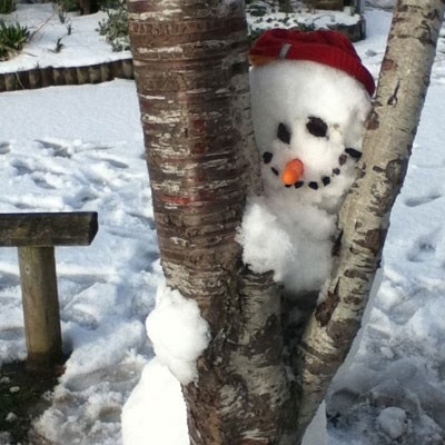 Peek-a-boo snowman.  I got the perfect tree out front for this one!  Already checked it out.  hahaha  : )