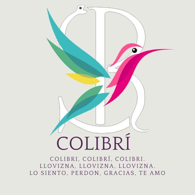 COLIBRI. HERRAMIENTA HOOPONOPONO El simbolismo del colibrí es prosperidad, éxito…