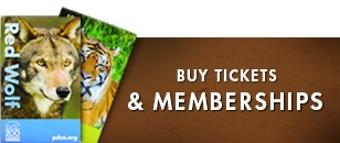 Point Defiance Zoo & Aquarium in north Tacoma is just 40 miles south of downtown Seattle.    Our address:   5400 N. Pearl St. Tacoma, WA 98407