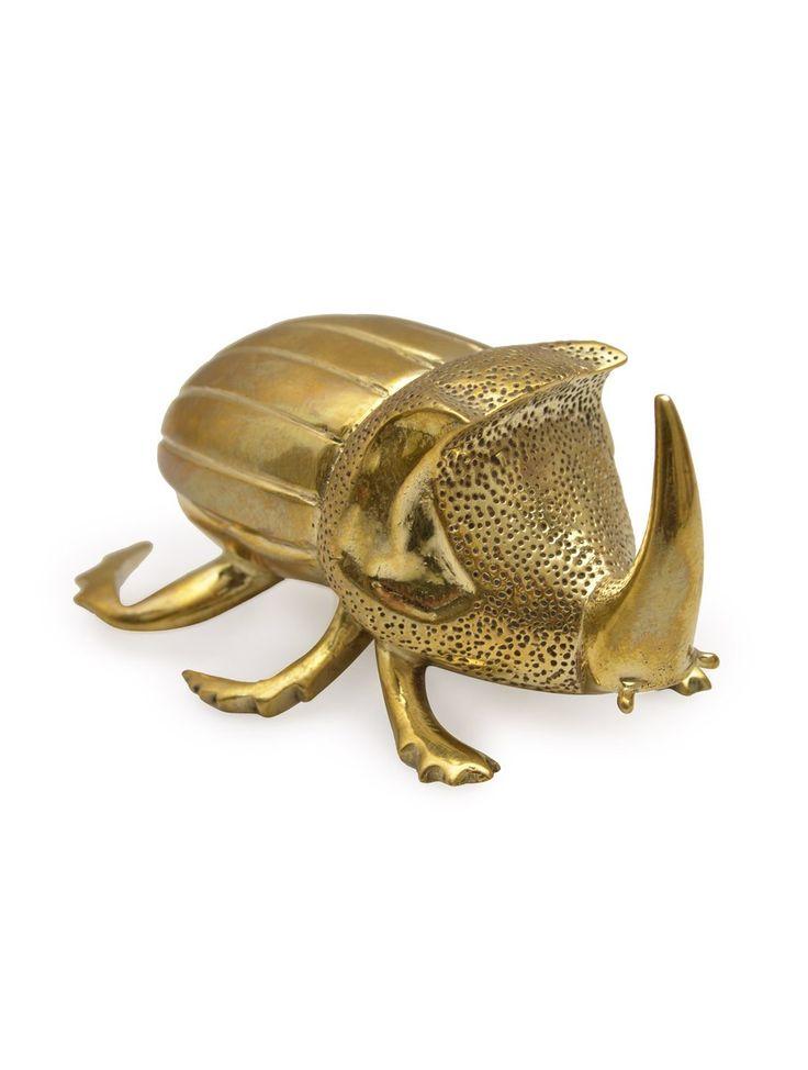 golden hercules beetle wwwpixsharkcom images