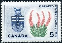 Canada Stamp -  (1966) Coat of Arms and Provincial flower - Yukon: Fireweed