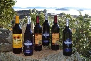 Are There Any Sulfite Free Wines? Sorry, there is no such thing as a 100% sulfite-free wine. There are wines that are almost sulfite-free though and many wines that are far less likely to trigger asthma-like reactions, headaches, skin rash, flushing, itching or swelling....
