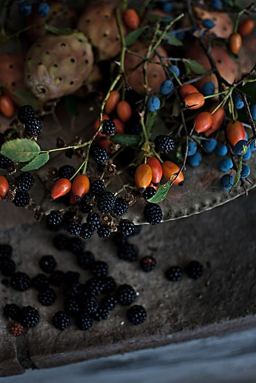 gifts from the garden: rose hips, blackberries, blueberries, and prickly pear. This Ivy House