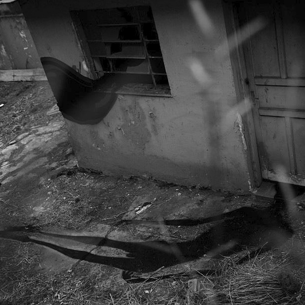 Herbert Baglione. 1000 Shadows.