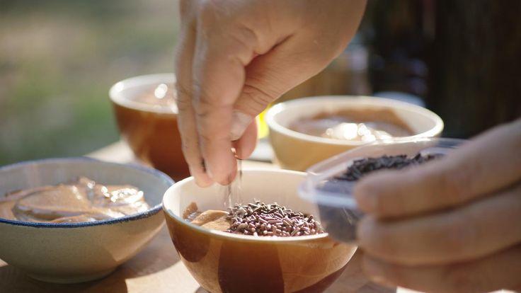 Vanille- en chocoladepudding, chocomelk en marshmallows   Dagelijkse kost