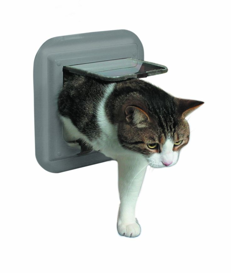 Trixie 38632 4-Way Cat Flap For Glass Doors Grey   : Cats furniture