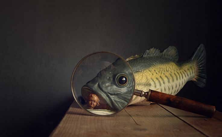 Stilleven Fotograaf: H Stilting