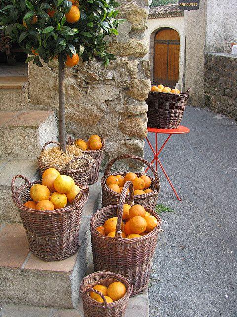 ♔ Le mas des orangers Biot ~ Provence