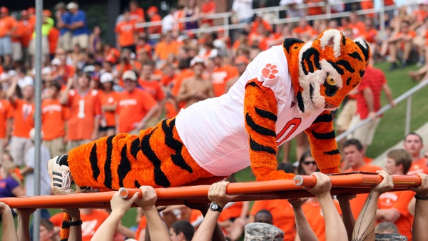 Tiger Traditions: Tiger Push-ups when the Tigers score!