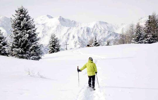 Eigenzinnig Trentino    Met haar heerlijke wijnen en spijzen en ongerepte natuur heeft Trentino bijna paradijselijke trekken. Ontdek deze prachtige provincie op de sneeuwschoen met een lokale hotelier of trek er zelf op uit met de langlaufski.      Lees meer in SNP.NL magazine nr. 26!