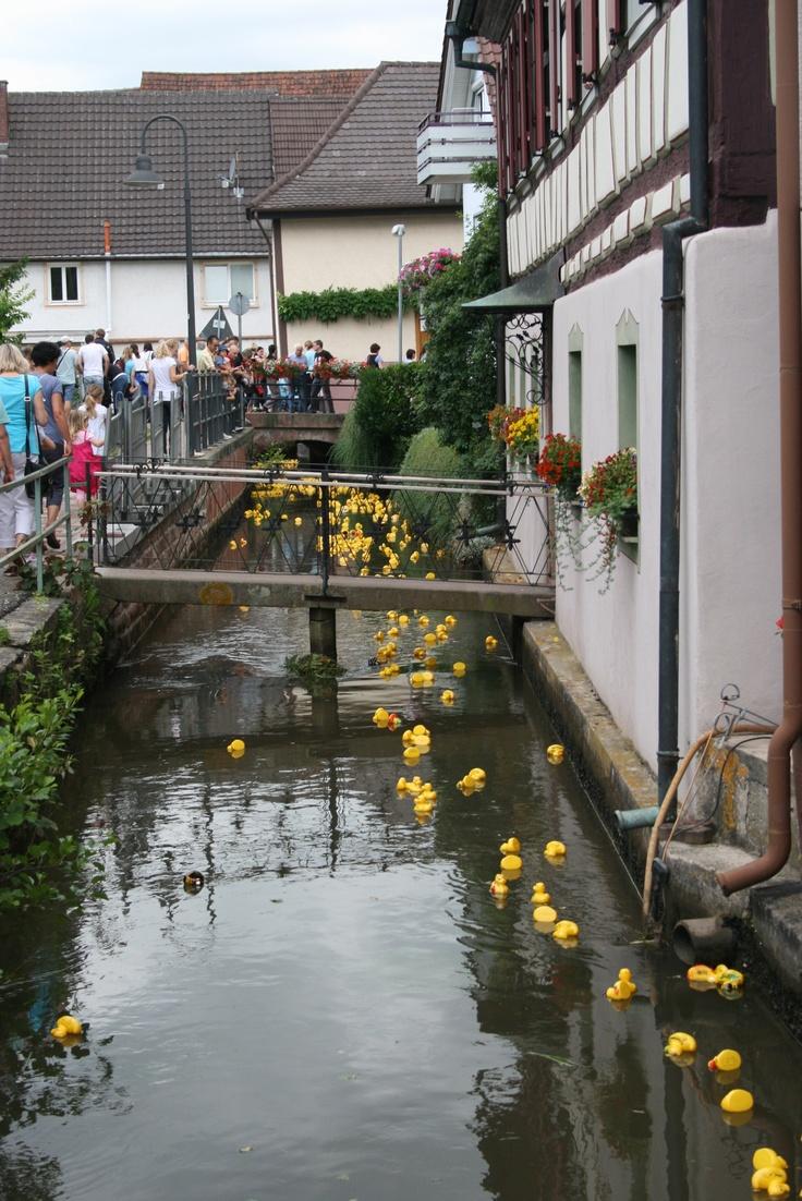 Entenrennen, Ettenheim
