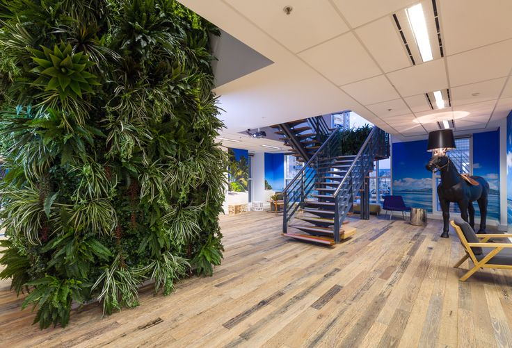 Office fitout converts two floors of tired government workspace into a cutting edge HQ for Switch PM and The Blue Rock