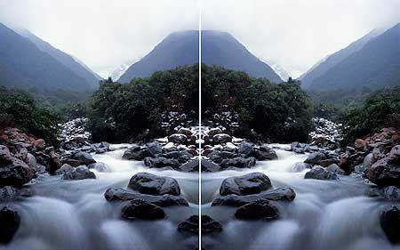 Ann Shelton. Wintering after a van der Velden study, Otira Gorge. (mirroring)